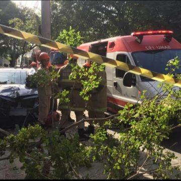 Motorista morre após ser baleada, e carro desgovernado atropela três pedestres