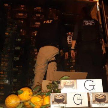 Polícia apreende 500 caixas de cigarro em caminhão carregado de tangerinas