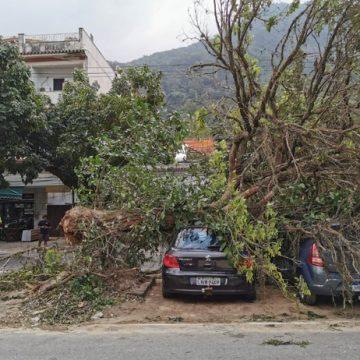 Vento causa estragos em vários bairros do Rio