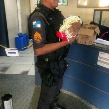 Recém-nascido é encontrado dentro de caixa de papelão em Jacarepaguá