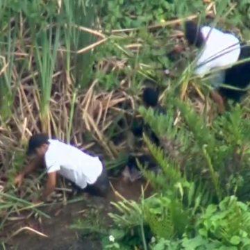Traficantes da Cidade de Deus fogem por manguezal durante operação da PM