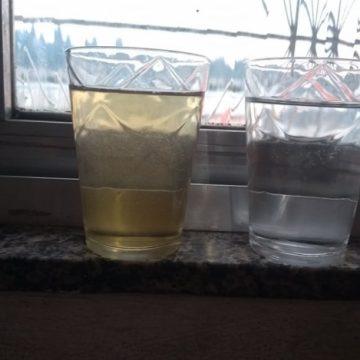 Com péssima qualidade da água, vereadora pede que Cedae não cobre contas de janeiro