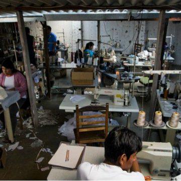 Denúncias de trabalho escravo aumentam 45% em São Paulo