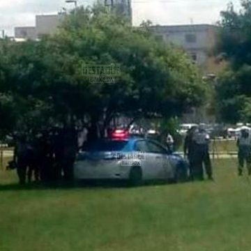 Homem é encontrado morto enforcado em árvore na Via Light, em Nova Iguaçu
