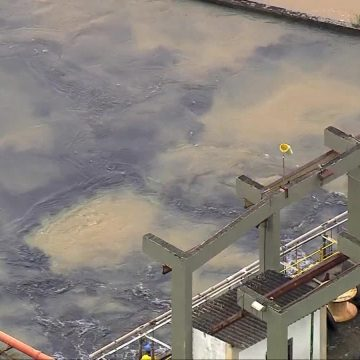 Imagens mostram carvão ativado misturado na água do Guandu