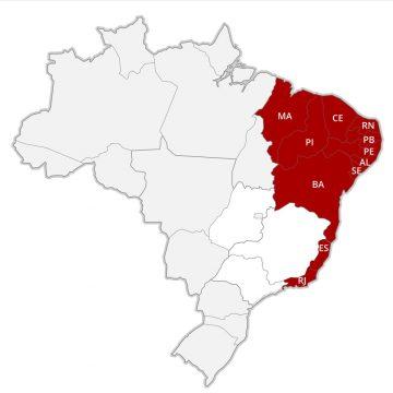 Ministério da Saúde alerta para risco de surto de dengue no RJ a partir de março