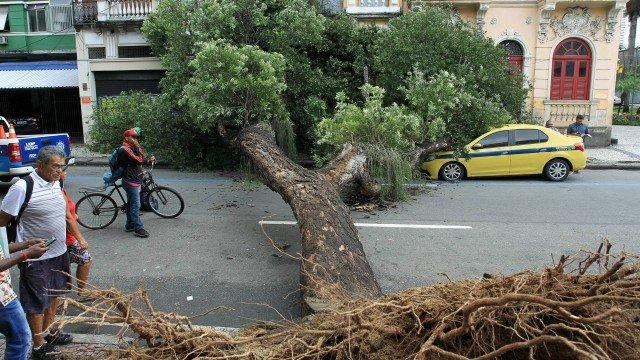 Árvore cai sobre táxi na Lapa: 'Foi uma coisa de outro mundo'