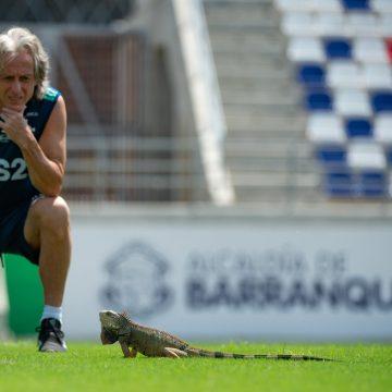 Lagarto intruso e papo com Michael: Flamengo treina na véspera da estreia na Libertadores