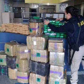 PRF apreende mais de 700 kg de maconha