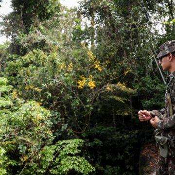Amazônia: Bolsonaro autoriza atuação das Forças Armadas no combate ao desmatamento