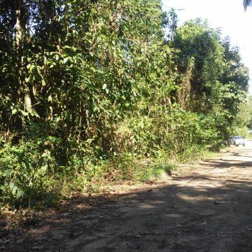 A VOZ DO POVO - Ainda há muito a ser feito em Nova Iguaçu