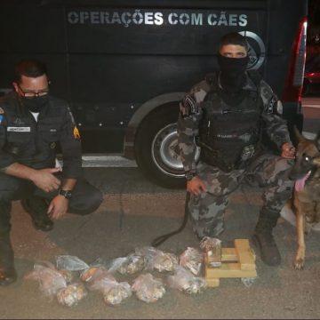 PM apreende drogas dentro de estepe e no interior de carro em via expressa da Região Metropolitana do Rio
