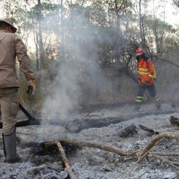 Chuva e força-tarefa ajudam a reduzir focos de incêndio no Pantanal, segundo governo; situação ainda é de alerta
