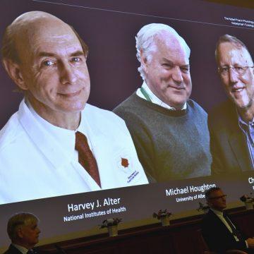Nobel de Medicina 2020 vai para Harvey J. Alter, Michael Houghton e Charles M. Rice pela descoberta do vírus da hepatite C