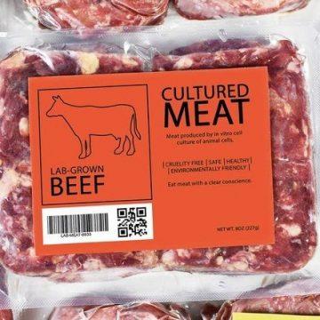 Feita de células e sem matar animais, carne de laboratório promete revolução na pecuária