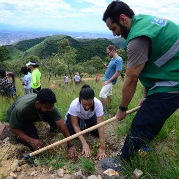 Focos:Projeto irá garantir o reflorestamento em áreas de Nova Iguaçu