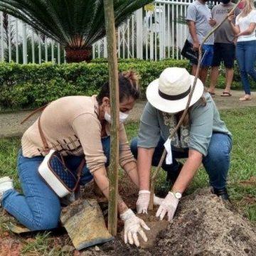 Famílias plantam mais de 40 árvores em homenagem às vítimas da covid-19 no Rio