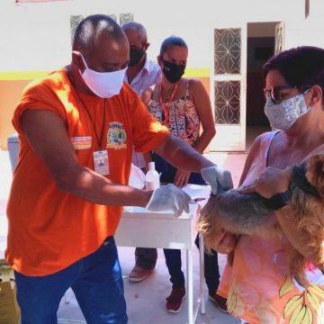 Belford Roxo promove Campanha de Vacinação Antirrábica nesta quarta e quinta-feira (04/08 e 05/08)