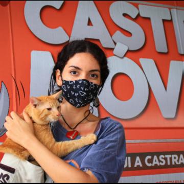 Agendamento para castração de cão e gato agora é on-line